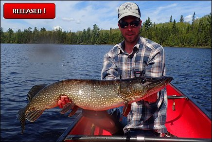 Lake Ogascanan - Northern Pike