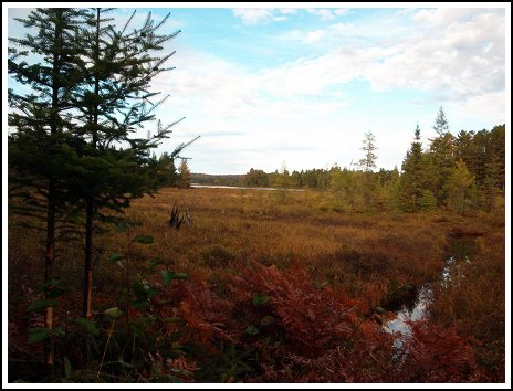 Lake Ogascanan - Moose Hunting - Quebec
